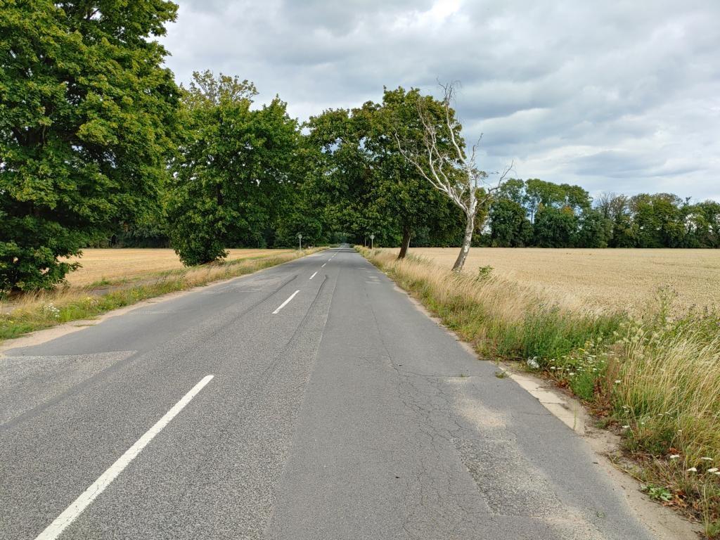 Zugangsstraße zum Hambi