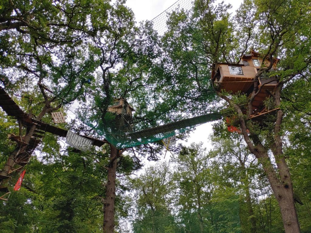 Baumhäuser in schwindelnder Höhe