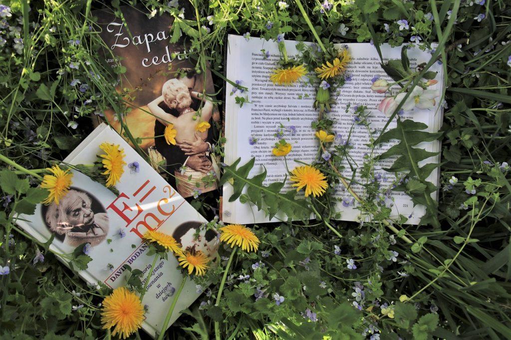 Bücher im hohen Gras